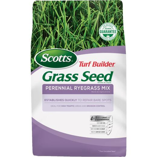 Scotts Turf Builder 7 Lb. Up To 2900 Sq. Ft. Coverage Perennial Ryegrass Grass Seed
